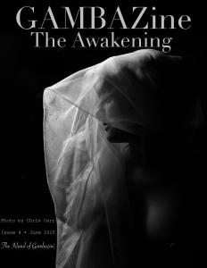 GAMBA Zine The Awakening